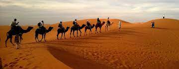 top 5 attractions in desert dubai
